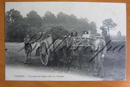 Landes D40 Transport Attelage Mule, Du Fumier Dans Les Champs. Muildier. - Farmers