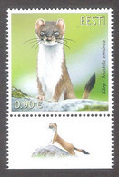 Estonian Fauna – The Stoat Estonia 2021 MNH Stamp + Label Mi 1020 - Estonie