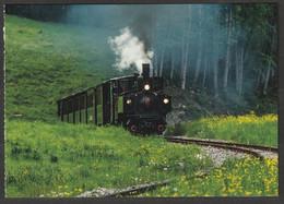 Postkarte Österreich Wälderbähnle Vorarlberg - Trains