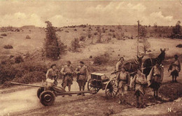 CAMP DU LARZAC  Le Canon Anti Char Et Son Caisson De Munitions   RV - La Cavalerie
