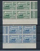 CAMEROUN - N°200/01 EN BLOC DE 4 AVEC BORDS DE FEUILLE NEUFS** SANS CHARNIERE - Neufs