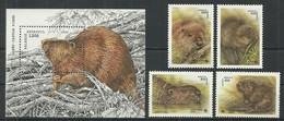 BELARUS Mint Stamps MNH(**), 1995-96 Year - Beavers - Bielorrusia