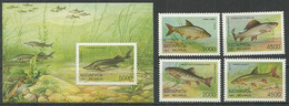 BELARUS Mint Stamps MNH(**), 1997 Year - Fish - Bielorrusia