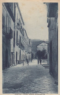 Camapania  - Avellino - Avella - Corso Vittorio Emanuele III -  F. Piccolo - Viagg - Bella Animata - Andere Steden