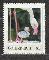 Österreich Personalisierte BM Tierkinder Im Tiergarten Schönbrunn Flamingo ** Postfrisch - Private Stamps