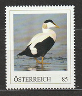Österreich Personalisierte BM Arktische Tierwelt Eiderente ** Postfrisch - Private Stamps