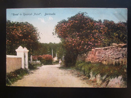 BERMUDA. ROAD TO SPANISH POINT - Other