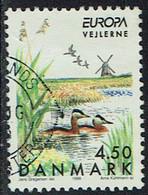 Dänemark 1999, MiNr 1211, Gestempelt - Gebruikt