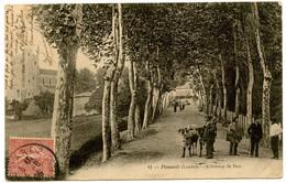 POMAREZ (Landes) - L'Avenue De Dax - Voir Scan - Altri Comuni