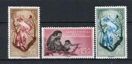 Guinea Española 1955. Edifil 355-57 ** MNH. - Guinea Espagnole