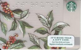 USA - Starbucks Card, CN : 6127, Unused - Gift Cards
