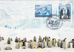France Carte Maximum 2009 4350 4351 Protection Zones Polaires Pôles - 2000-09