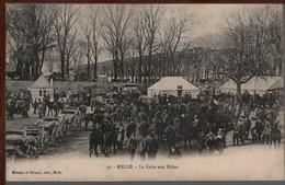 79 - MELLE - La Foire Aux Mules - Melle
