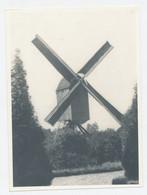 Originele Foto - Oude Molen - Windmolen Windmill - Autres