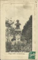 CPA De ALAIS - La Statue Sauvage. - Alès