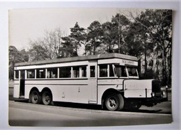 TRANSPORTS - Autobus - Berliner Verkehrsmittel - Bus & Autocars
