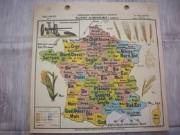 Carte France Géographie Economique Et Agricole( Plantes Alimentaires : Céréales ) - Mapas Geográficas