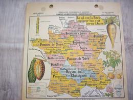 Carte France Géographie Economique Et Agricole ( Plantes Alimentaires Et Industrielles ) - Mapas Geográficas
