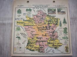 Carte France Géographie Economique Et Agricole ( Les Bois Et Les Forêts ) - Mapas Geográficas