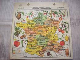 Carte France Géographie Economique Et Agricole ( Alimantation - Les Arbres Fruitiers ) - Mapas Geográficas