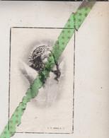 Victor Désirè Depaemelaere-Dejonghe-Roelens, Halluin 1872, Meenen 1948 - Obituary Notices
