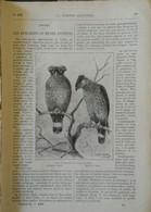 1898  LES SPILORNIS OU BUSES HUPPÉES -  TRAVAUX PUBLICS AU TONKIN - FABRICATION DES TUBES D'ACIER - BATEAU ROULEUR - 1850 - 1899