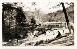 Real BW Photograph(Postcard Size)- Still Pool, Betws-Y-Coed, Caernarvonshire - Photographs