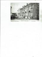 Ste  Mariaburg  - Maria Lei - Avenue Marie  -tram Met Paard - Brasschaat
