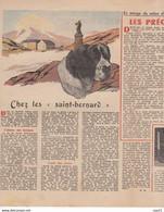 LE PELERIN 1 Décembre 1946 église Sainte Odile Paris, Planche PATAPOUF, Chez Les Saint-Bernard, Salon De L'aviation - 1900 - 1949