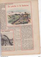 LE PELERIN 8 Décembre 1946 UNESCO, Planche PATAPOUF,le Passé Du Palais Bourbon, La Chasse à La Baleine, Ste Odile - 1900 - 1949