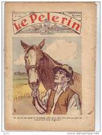 LE PELERIN 28 Juin 1936 Le Monde Rural, Agriculteur, Paysan, Semis ... - 1900 - 1949