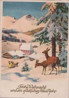 Frohe Weihnacht Rehe Im Winter - Other
