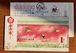 Red-crowned Crane Bird,China 2005 Ji'an Post New Year Greeting Pre-stamped Card - Kranichvögel