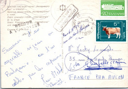 BULGARIE Affranchissement Sur Carte Postale, Cachet(s) NPAI Rebut Postal [REF/MA0960] - Errors, Freaks & Oddities (EFO)