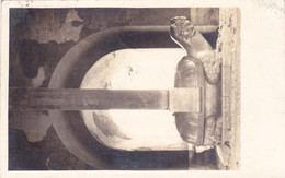 2584/ Fotokaart China, Turtle, 1939 - Chine