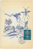32533 - ALBANIA  - POSTAL HISTORY - MAXIMUM CARD Medicine  MALARIA - 1962 - Enfermedades
