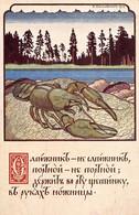 21-P-TBBR.2477 : CARTE ILLUSTREE RUSSIE. - Rusia