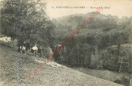 65.  BAGNERES DE BIGORRE . Montagne Du Bédat . - Bagneres De Bigorre