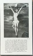 DOODPRENT- THEODORE KESTENS VEUF DU C.L. DE BACKER (° LEUVEN 18+/- COURTRAI 1941 (dp 134 ) - Overlijden