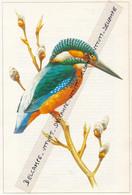 Fiche Illustrée : Oiseaux, MARTIN-PECHEUR, Alcedo Atthis Ispida L. - Animals