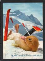 SATURNIN AU SPORTS D'HIVER JE SKI PAS SI FACILE QUE çA .PAR JEAN TOURANE N°42  CPSM   Edition YVON - Dressed Animals