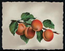 Eau-de-Vie D'Abricot - Fruits & Vegetables