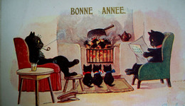 Cpa CHATS NOIRS Humanisés FAMILLE  CHAT AU COIN DU FEU . DRESSED BLACK CAT FAMILY  . KITTEN . KATZE OLD PC - Dressed Animals