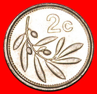 * OLIVE (1991-2007): MALTA ★ 2 CENTS 1991!  LOW START ★ NO RESERVE! - Malta
