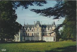 Environs De Jarnac - Le Château De Cresse Commune De Bourg - (P) - Jarnac