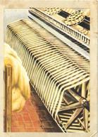 Chromos N° 424 - Chromos Instructifs 2eme Série - Chocolat Jacques - Jacques