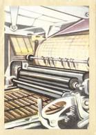 Chromos N° 428 - Chromos Instructifs 2eme Série - Chocolat Jacques - Jacques