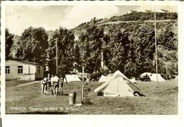 "CP De DIEKIRCH "" Camping Au Bord De La Sûre "" - Diekirch"