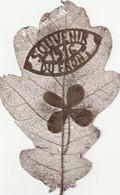 Travail De Poilu N°2 Feuille De Chêne ( Motif Souvenir 1916 Du Front ) - 1914-18