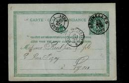 Carte N° 8. Obl. BRUXELLES 28/05/1877 Pour Lyon (France) 30/05/1877 - Postcards [1871-09]